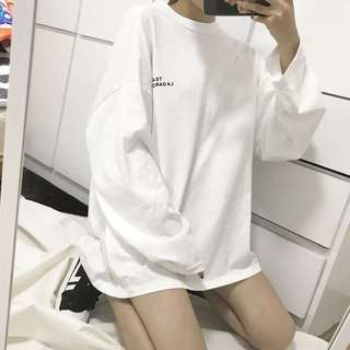 [PO] Embroided Oversized Pullover / Sweatshirt