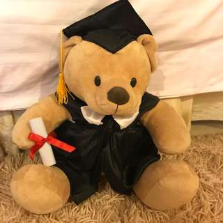Graduation Teddy Bear / Boneka Wisuda