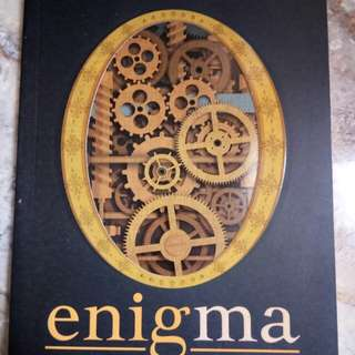 Novel-Enigma