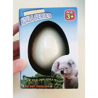 Hatching Eggs (Koala Series)(Imported from Australia)