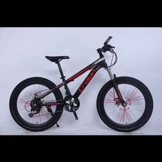 Free home delivery -Brand new 24'' MTB Bike / Bicycle with , Sports rims,Disc brakes ,Suspension & 21-Speed /Gears etc