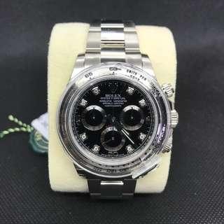 Rolex116509