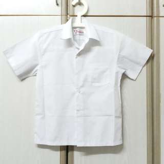 Professor School Uniform ( Shirt )