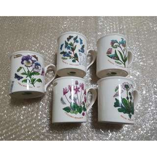 5 cup cangkir portmeirion