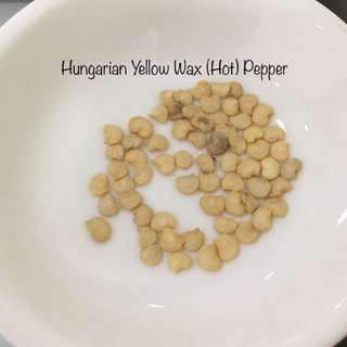Hungarian Yellow Wax (Hot) Pepper