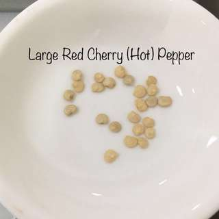 Large Red Cherry (Hot) Pepper