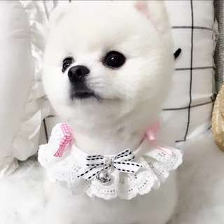 [Pre-Order] Handmade white and pink ribbon dog neck collar