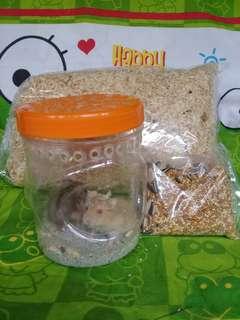 Hamster winter paket hemat