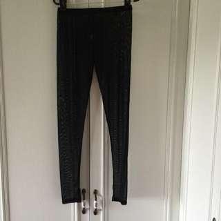 Brand new transparent black Leggings pants - Free Size