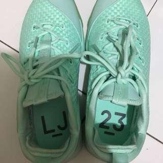 Sepatu basket lebron 14