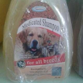 Shampo Anjing antikutu