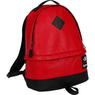 Supreme x TNF The North Face Leather Day Pack backpack 背包 背囊 RED Supreme backpack