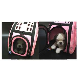 Pet Carrier - small dogs