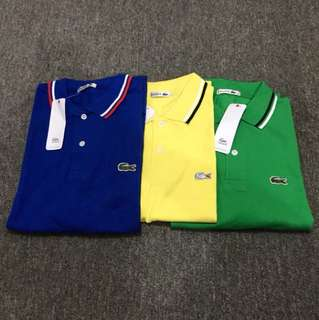 Lacoste Polo Shirt Trio Large