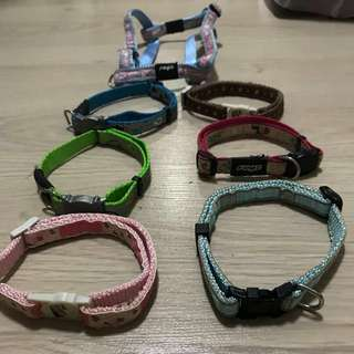 Almost New Rogz pet collar / other brand
