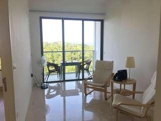 Skies Miltonia Yishun 1brm condo for rent (NO AGENT FEE)