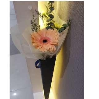 Gerbera flower Cone