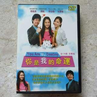 Korea Drama DVD : 你是我的命运 You are My Destiny