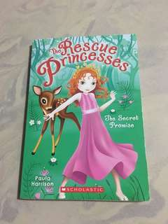 Rescue princess the secret promise