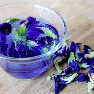Dry Blue butterfly pea flower