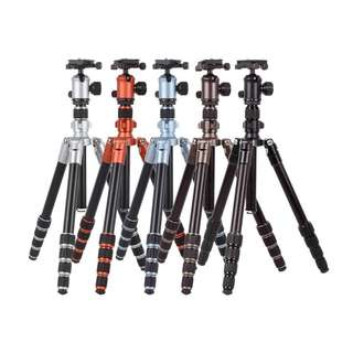 Gizomos GT-23A5S + GHA-26D Professional Camera Tripod + Monopod + Ballhead (Multi Colour Tripod for DSLR or Mirrorless Camera)