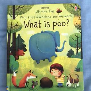 BN Usborne Lift the Flap - What is Poo?