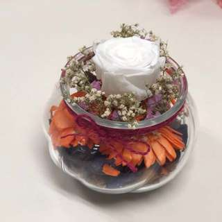 Pure Love (Preserved flower)