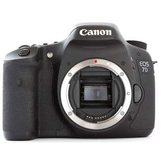 Multiple SLR and Mirrorless Camera  and Lenses For Sale (lowered Price)