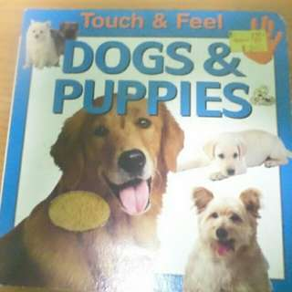 Book - Touch and feel Dog and Puppies book