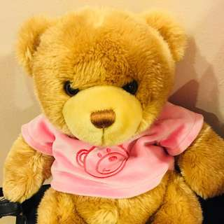 Teddy bear kids toy