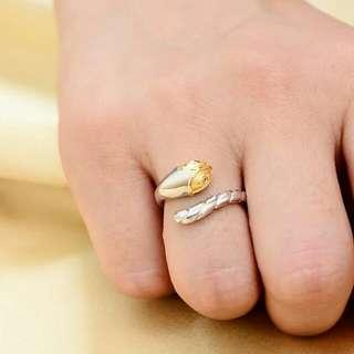 十二生肖純銀925戒指 有需要哪款請PO款示給我 賴lucky2200(小培) FB:南部雜貨舖