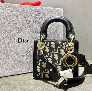 Ready Stock High Gred Quality Lady Dior Mini