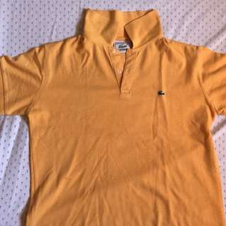 Kids Branded Polo Shirts for Boys