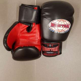 Muay Thai Boxing Gloves-As good as NEW