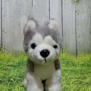 BONEKA Anjing Husky
