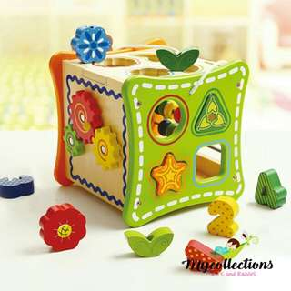 5 in 1 Learning Cubes