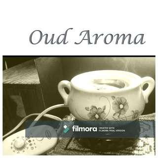 Oud Agarwood 沉香 Aroma