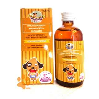 Pampered Pooch Probiotic for Healthy Stomach