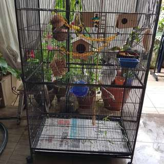 large cage