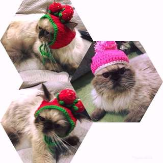 Crochet Cat Hat (CMM-CCH)