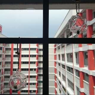 Geometry air plant terrarium container