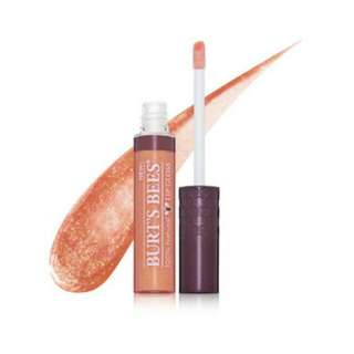 Burt's bees fall foliage lip gloss