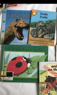 Kids books : Dinosaur / double trouble / ladybird