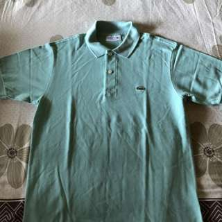Teal Lacoste polo shirt (Classic fit S)