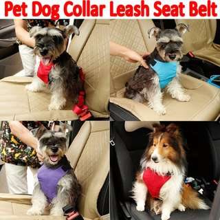 TPE042 Pet Dog Collar Leash Car Seat Belt
