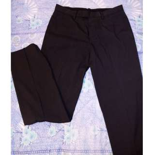 SISLEY Men's Pleated Dress Pants