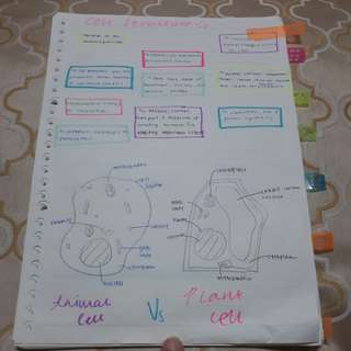 Science Biology Notes