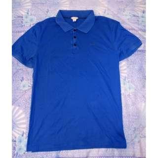 CALVIN KLEIN Blue Polo Shirt
