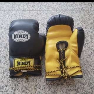 Windy Boxing Gloves 6 OZ