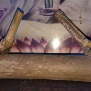 Bambu petuk asli